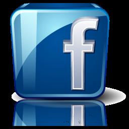 icon facebook 60 256