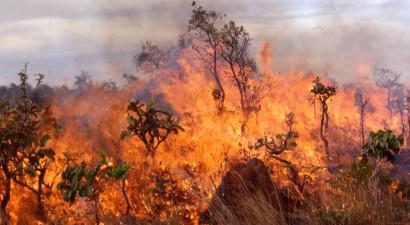Καίγεται ο Τύρναβος Λάρισας