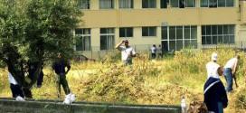 Προσφυγή σωφρονιστικών υπαλλήλων στο ΣτΕ