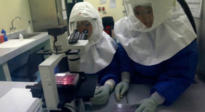 Θετική πρώτη δοκιμή εμβολίου για τον Έμπολα