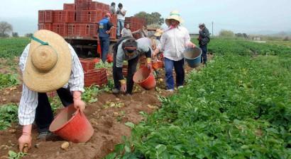 Σεμινάριο ειδικά σχεδιασμένο για αγρότες από την Τράπεζα Πειραιώς