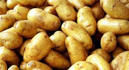 Κατάσχεση ακατάλληλης πατάτας στον Πειραιά
