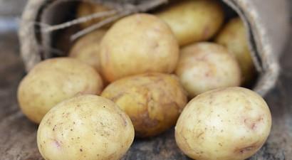 Δέσμευση ακατάλληλης πατάτας στην κεντρική λαχαναγορά του Ρέντη