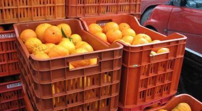 Κατάσχεση 1,5 τόνου πορτοκαλιών στην κεντρική λαχαναγορά του Ρέντη