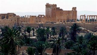 Το Ισλαμικό Κράτος εκτέλεσε 217 άτομα στη Παλμύρα