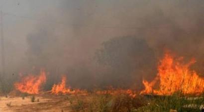Ποιες περιοχές κινδυνεύουν απο πυρκαγιά την Κυριακή