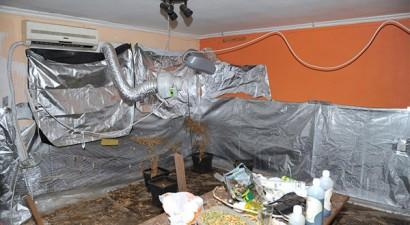 Είχε μετατρέψει το διαμέρισμα του σε εργαστήριο υδροπονικής κάνναβης