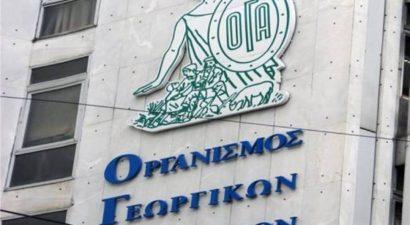 ΟΓΑ: Ποιοι δικαιούνται ειδικό επίδομα έως 360 ευρώ