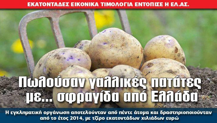 07_patates_18_01_slide