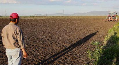 Ποιο νέο deal για συμβολαιακή γεωργία και κτηνοτροφία έκανε η Πειραιώς